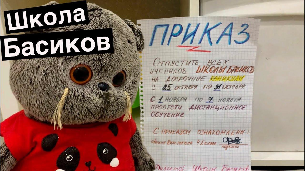 Директор Школы Басиков объявила внеочередные каникулы / Школа Басиков