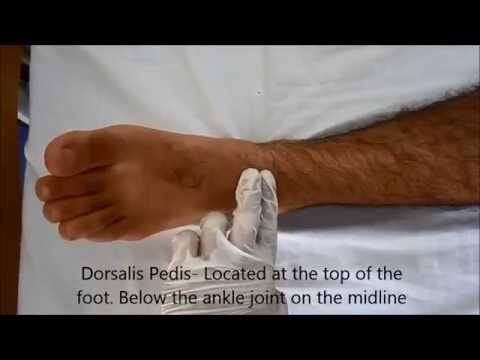 The Item I Wear to Death: Sam Edelmans Block Heel Mule Sandals