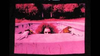 Frank Zappa  Peaches En Regalia(1978 Live)