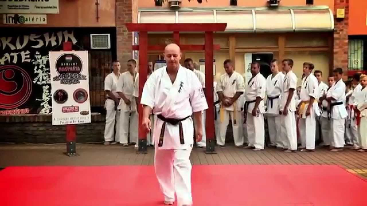 Yakuzák Se 2014. Nagykáta - YouTube