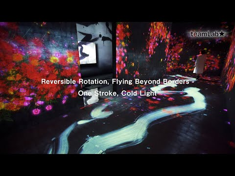 Reversible Rotation, Flying Beyond Borders - One Stroke, Cold Light