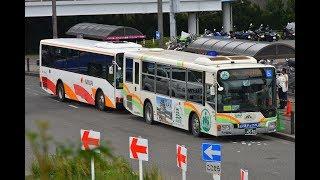 速報【 最終日 】関空 鉄道代行 りんくうタウン駅 関西バス大集合 まるで バスまつり