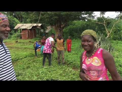 Radio Taboo (Solar Community Radio Station) in Cameroon.