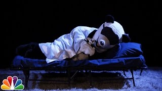 Audience Suggestion Box: Hashtag the Panda Hibernates, The British Bachelor