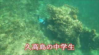 魚突きの事なら 【沖縄県魚突き倶楽部】 http://www.sakanatuki.com/ ブ...