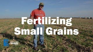 Fertilizing Small Grains
