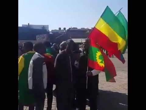 South Africa: Protest against Human Rights violation in Ethiopia