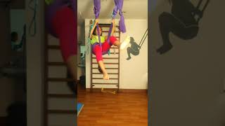 aerial yoga - i love to fly