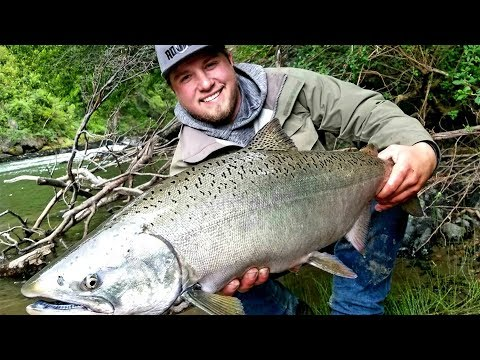 Patagonia Fishing Adventure - Chile Salmon & Brown Trout Fishing