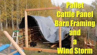 Framing the Pallet Cattle Panel Barn (until the wind ruined it)