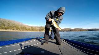 Dale Hollow Winter Bass Fishing December I love this place