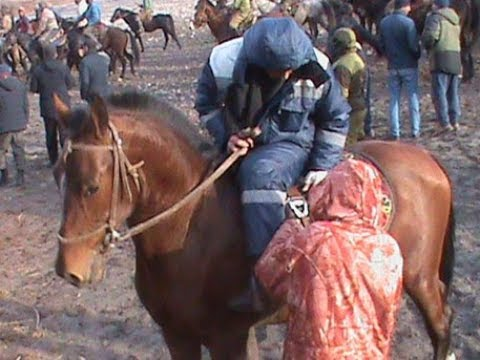 МУСОБИКАИ БУЗКАШИ ТАВИЛДАРА-ЧИЛДАРА ПОЛЬНОЕ ВЕРСИЯ  05-01-2020
