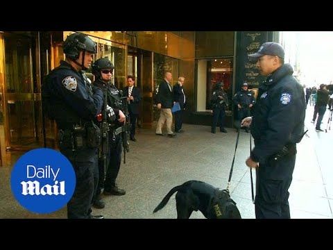 Security for Trump Tower disrupted Midtown Manhattan in November - Daily Mail