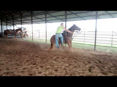 Sorrel horse~ ROPING HORSE FOR SALE