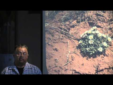 Navajo Cultural Uses of Native Plants in the Four Corners Region