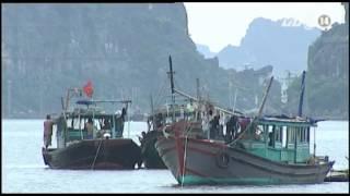 VTC14_Hàng chục nghìn tàu thuyền được kêu gọi tránh trú bão