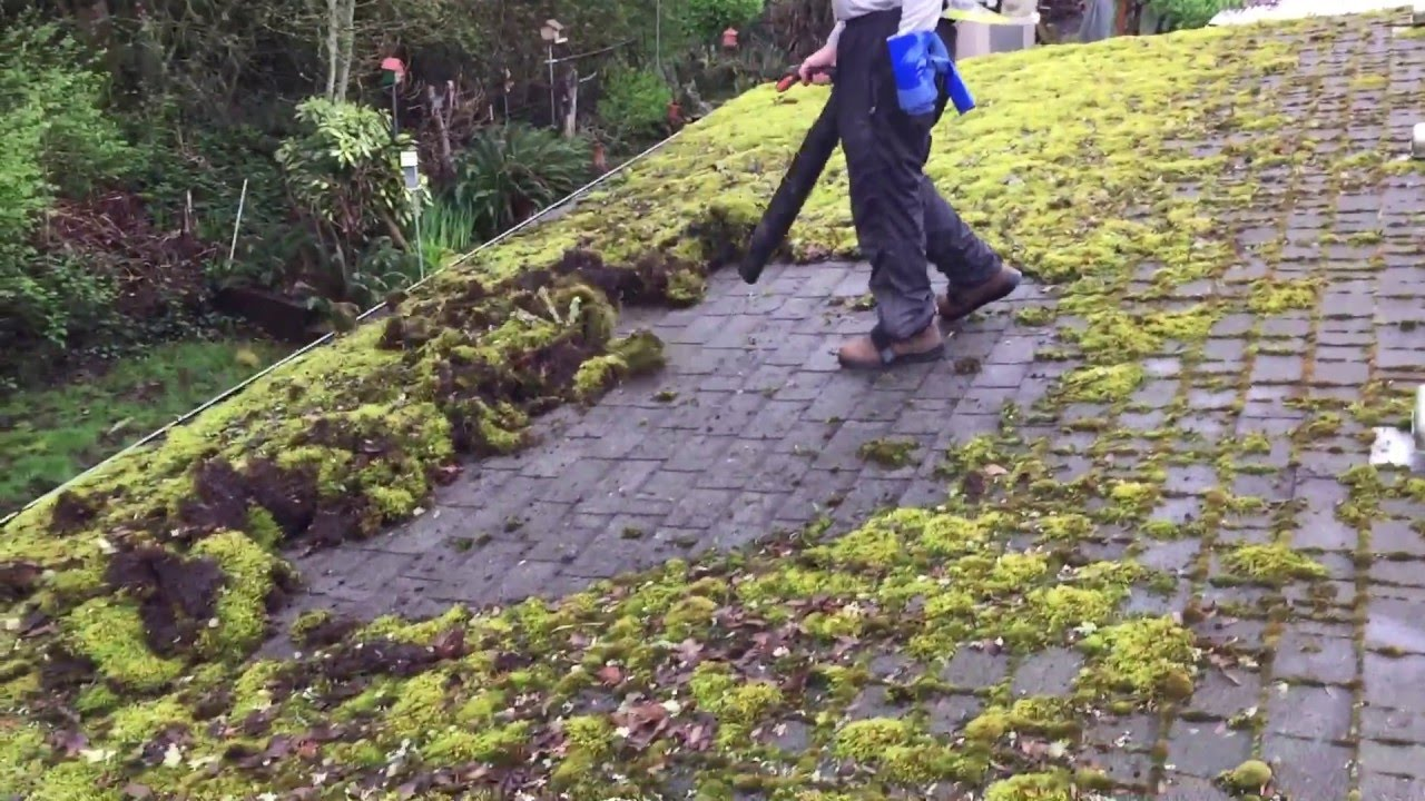 Roof Clean Moss Removal Youtube