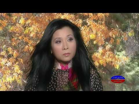 Phuong Mai   Nhat Ky Doi Toi