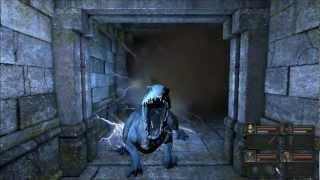 Legend of Grimrock Level 10 pt 1 - Walkthrough and Guide