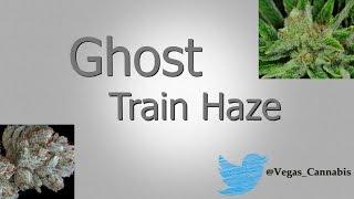 Ghost Train Haze Strain Information / Review