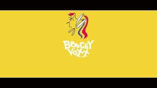 テレキャスタービーボーイ - すりぃ [cover] / BOOGEY VOXX