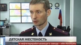 Расследование жестокого убийства собаки в Хабаровске. Новости. GuberniaTV.