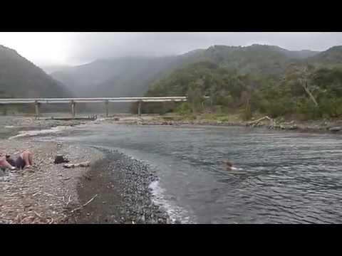 Cuba Swimming in River by La Mula