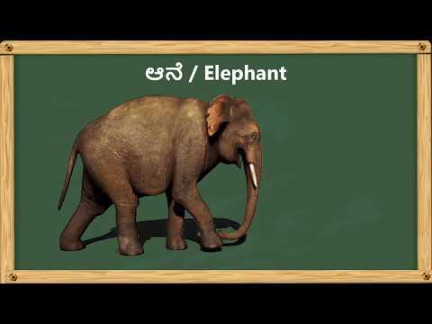 Bindi Baby Animals (Kannada): A Beginner Language Book for Kannada Kids (Kannada Edition): Aruna K. Hatti, Kate Armstrong, Hema M. Hatti: 9781943018062: Amazon.com: Books