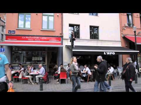Brussels In a Flash. An Introduction to the Belgian Capital