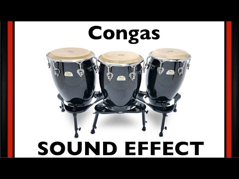 Congas Sample | Sound Effect | Loops | HD