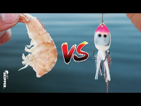 BAIT VS LURES: Which Works Best?  Saltwater Fishing Experiment