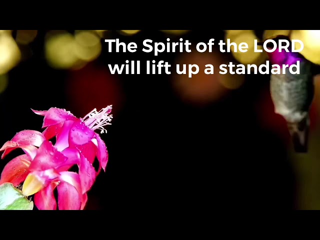 The Spirit of the Lord  Will lift up a Standard