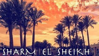 Amazing Sharm El Sheikh I Info trip