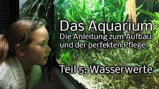 Das Aquarium - Die Anleitung zum Aufbau und Pflege. Teil 5: Wasserwerte
