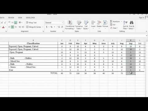 How to Use Microsoft Excel to Track Cattle Ranching : MS Word & Excel