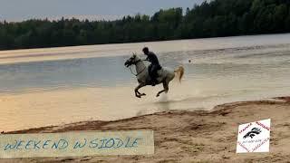Stajnia Mustang Weekend w Siodle