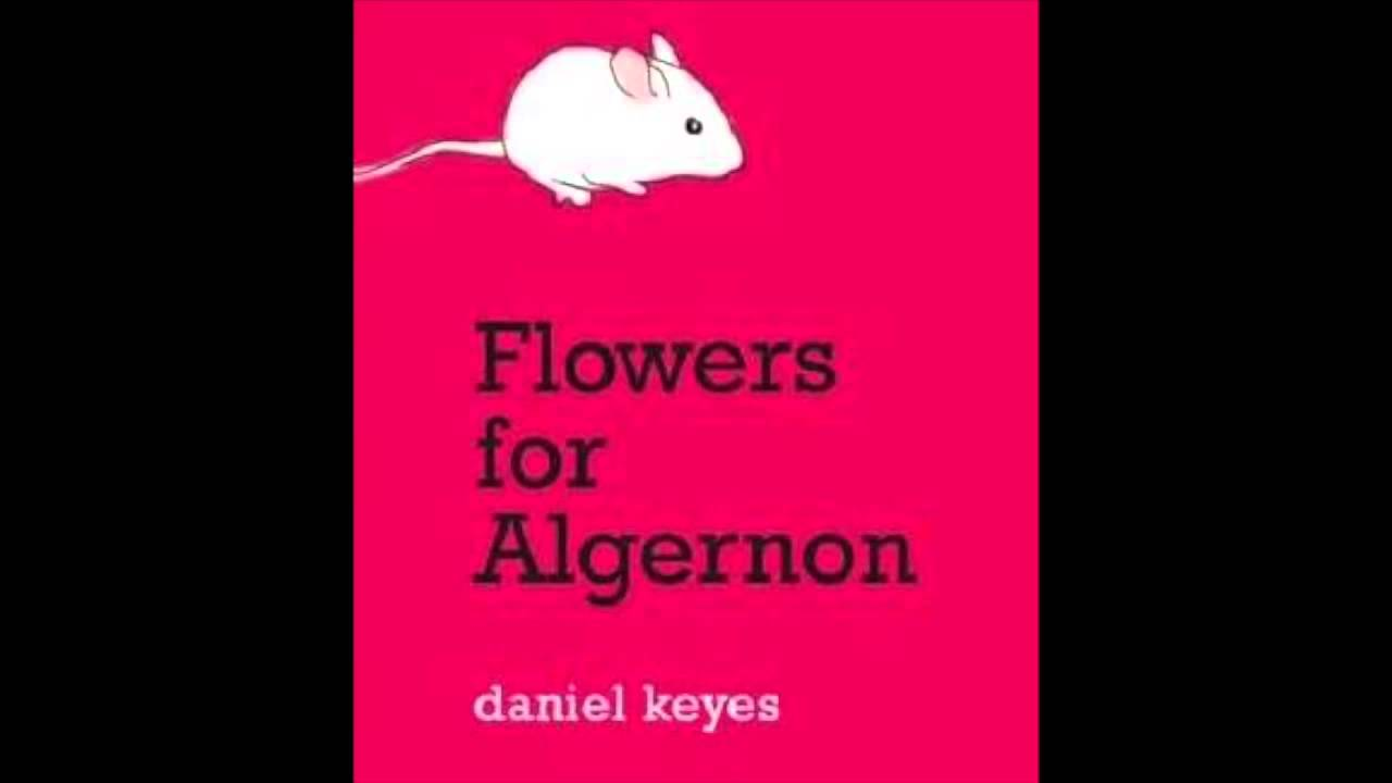flowers for algernon the song