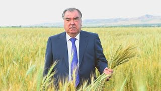 Худжанд. Таджикистан. Как меня встретили друзья!