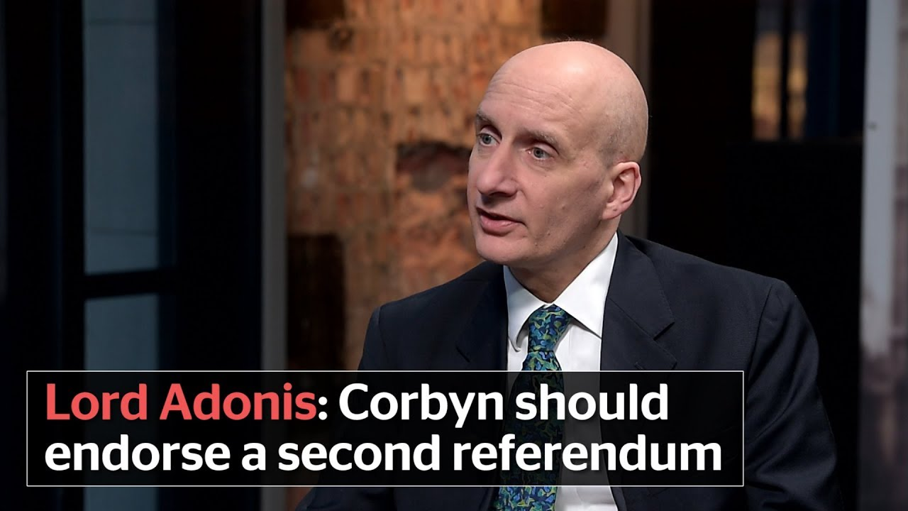 Image result for lord adonis brexit