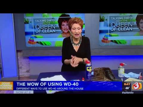 USES OF WD- 40 - Queen Of Clean On TV