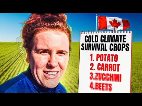 Survival Garden Crops To Grow In Canada. MUST WATCH. | Gardening in Canada