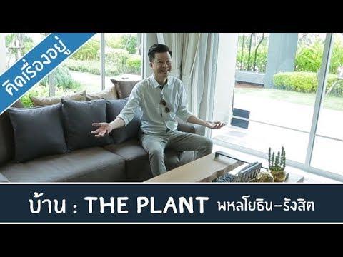 คิด.เรื่อง.อยู่ Ep.383 - The Plant พหลโยธิน-รังสิต
