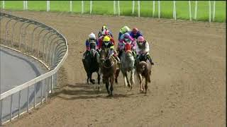 Vidéo de la course PMU PRIX GOLD CIRCLE HORSES TO FOLLOW PODCAST MR 97 HANDICAP