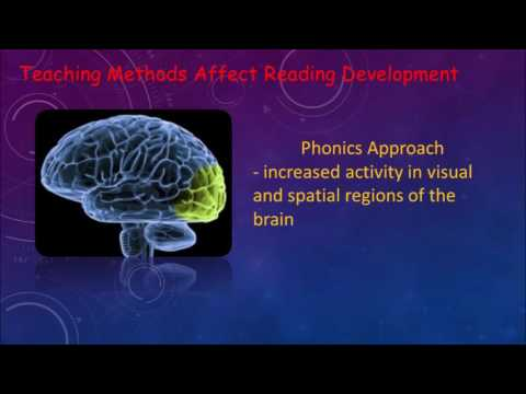 Phonics vs Whole Word ETEC 512 Cog Neuroscience
