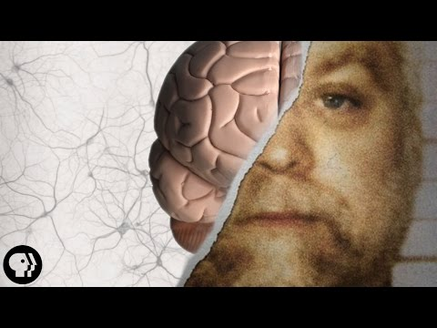 Can Your Memory Make a Murderer?