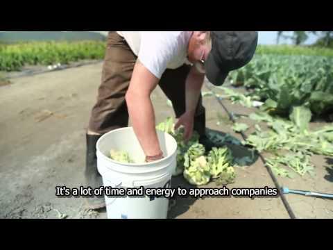 Les Jardins de Marie Bio, a small scale, organic farming incubator