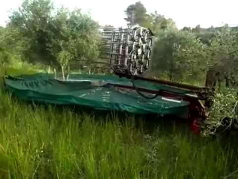 πρωτοποριακό μηχάνημα μαζεύει τις ελιές