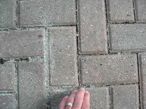 how to keep sand from washing out of pavers