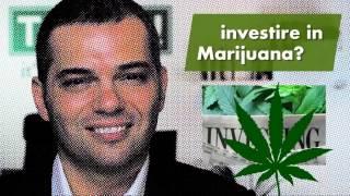 Investire in Marijuana?