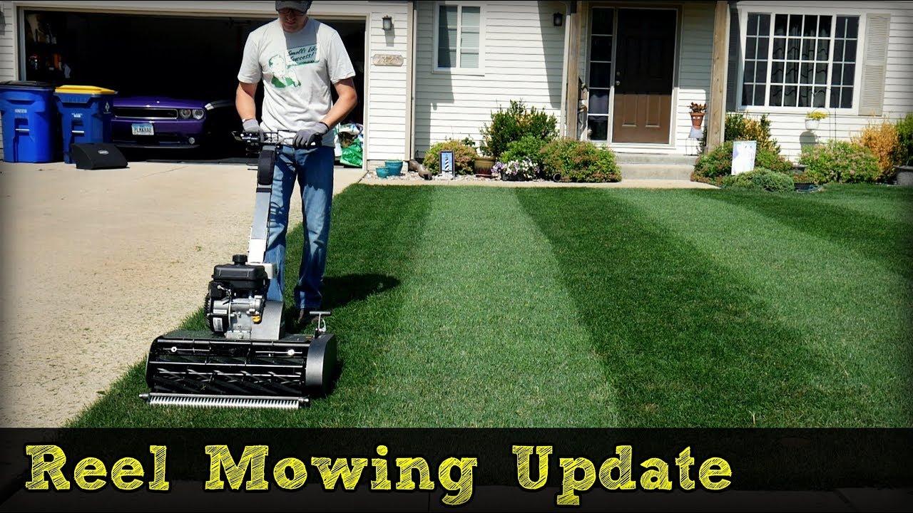 Swardman Reel Mower Striping + Reel Low Project Update